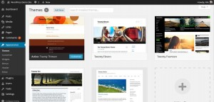 wordpress-38-themes-screenshot