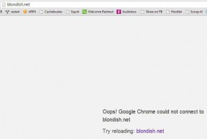 blondishnet-hostgatoroutage-april2014-oopsie
